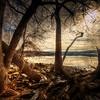 Hudson River Shore Line