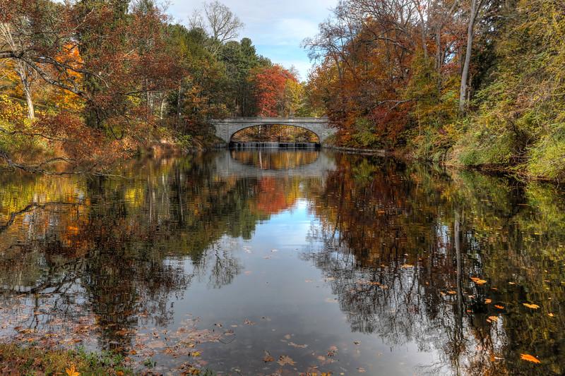 Autumn at the Vanderbilt.