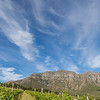 Stellenbosch Vineyard with Clouds