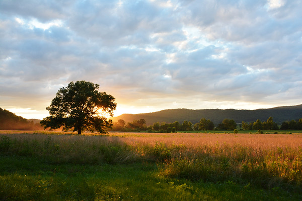 Cades Cove Sunset in the Smokies, Tennessee