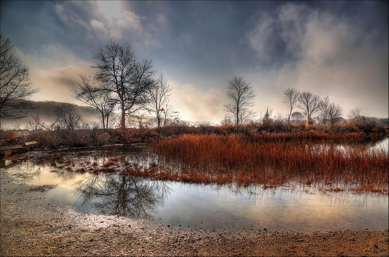Pond Mist