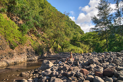 The boulder beach at the mouth of the Honokane Iki Valley. Big Island Hawaii, August 2011. PololuTM0085_082611_Prnt.jpg