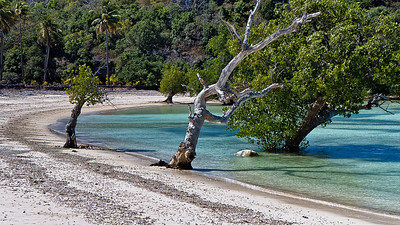 Another deserted beach and mangrove lagoon on the southern end of Rote Island. Indonesia.