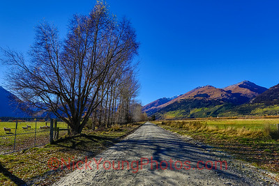 Country Road in Central Otago