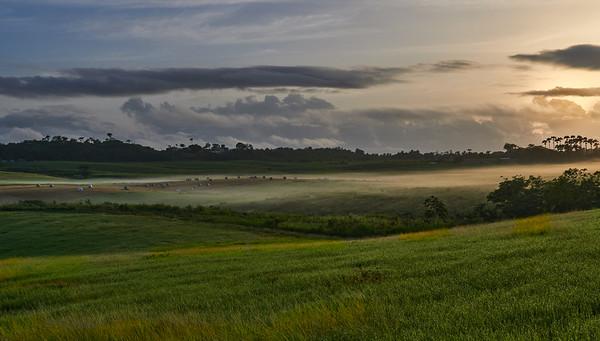 Redlands 2 - Early Morning Mist