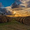 Golden Hay #sunrise #travel #seascape  #barbados