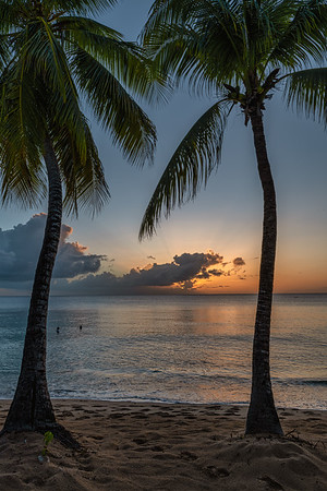Sunset between the Palms