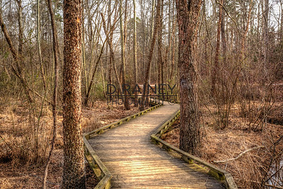 Conestee Nature Path