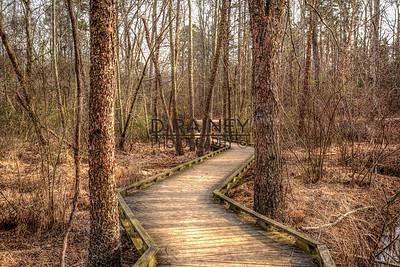 Conestee Nature Path