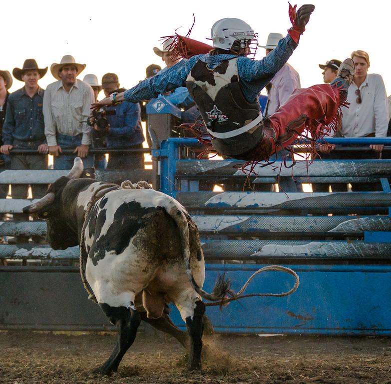 IMAGE: http://rdalrt.smugmug.com/Langham-PBR-Rodeo/2012-Langham-PBR-Rodeo/i-FSND3xN/0/XL/1D4A9928-XL.jpg