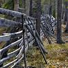 Vanha poroaita, Sodankylä_ Gammalt renstaket_  Old reindeer fence