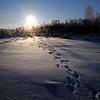 Lumi- Snö- Snow