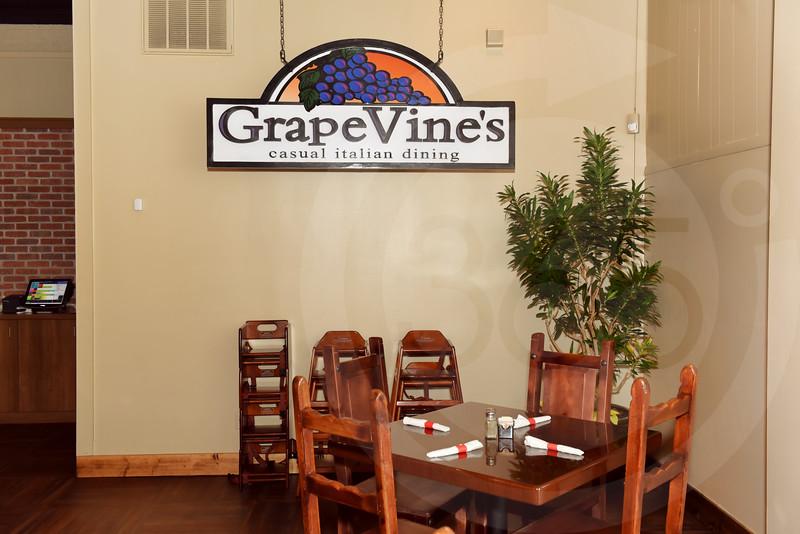 Dahlonega_Grape Vine_2696