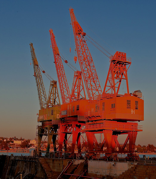 _R0D1346_7_8_tonemapped  Cranes Mare Island-2
