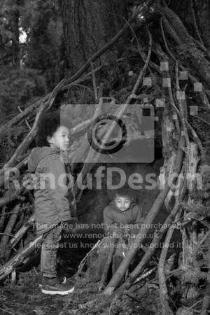 01 - Woodland campfire
