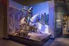 Columbus_Infantry Museum_3683