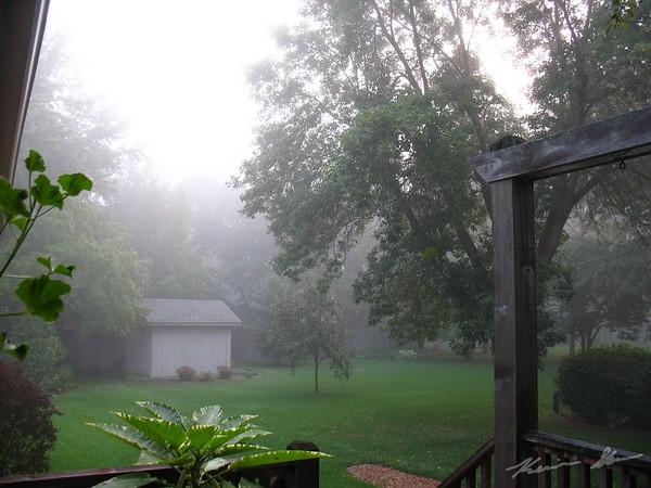 Fog envelopes the neighborhood