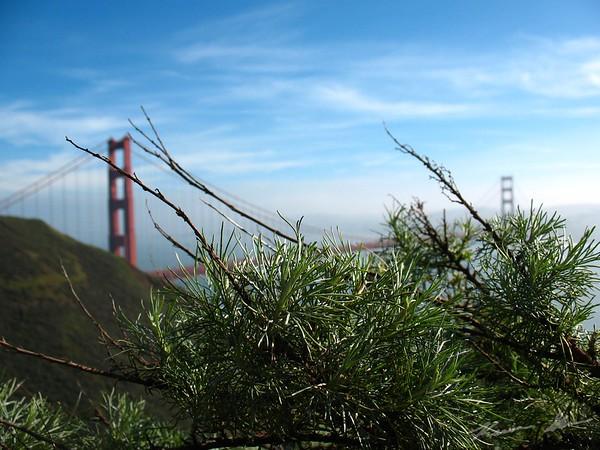 Different Views of the Golden Gate Bridge under a Hazy Sky