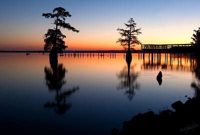 Reelfoot Lake,TN