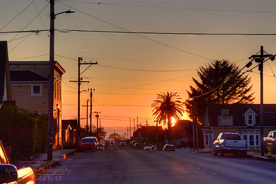 FB-190913-0001 Sun sets behind a tree along a street in Fort Bragg