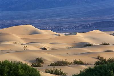 DV-180422-0009 Mesquite Flat Sand Dunes at Sunrise-6