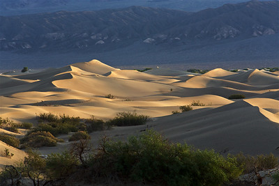 DV-180422-0006 Mesquite Flat Sand Dunes at Sunrise-3