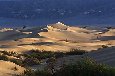 DV-180422-0007 Mesquite Flat Sand Dunes at Sunrise-4