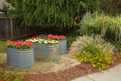 PF-HROS-180728-0003 Water Tank Flower Beds in a Yard
