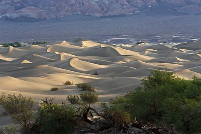 DV-180422-0008 Mesquite Flat Sand Dunes at Sunrise-5