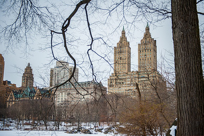 Central Park, NYC