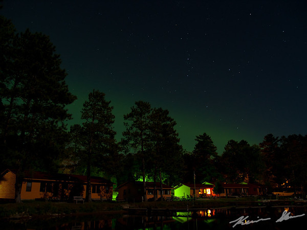A low aurora banner glows just over the treeline
