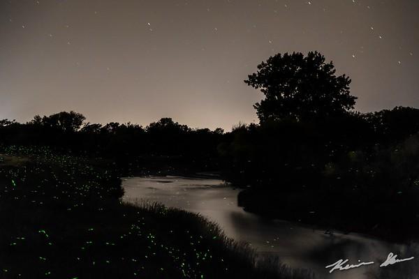 Fireflies dot the shoreline of Beaver Creek