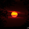 The planet Venus transits across the sun during the late afternoon in a once in a lifetime showing