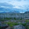 Pacific Crest Trail off Santium Pass