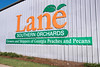 Peach_Lane Orchards_0349