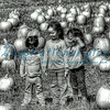 Pumpkin Patch Girls HDR