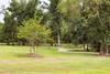 Perry_Rotary Centennial Park_4570
