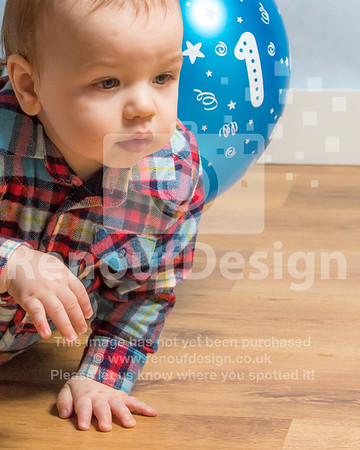 Freddie's First Birthday photoshoot