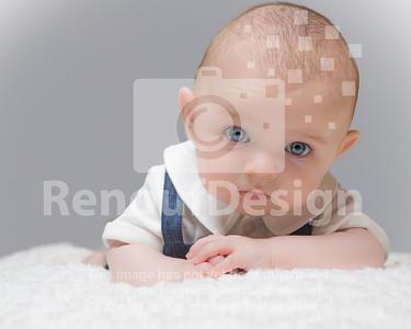 Milo - age 16 weeks - Photo no. 01