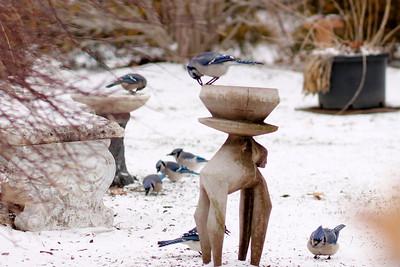 """I've Got The Winter Blues"""