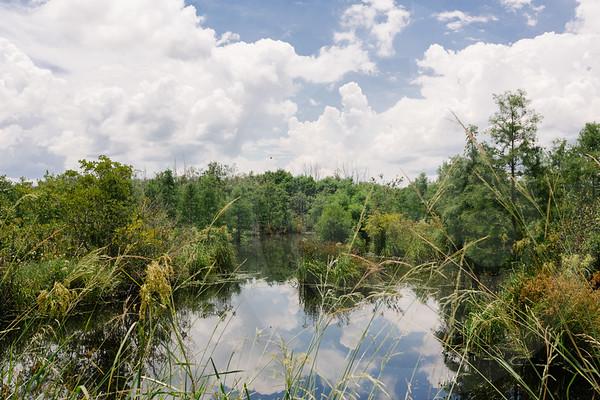 Mossy Pond Retrievers-8457