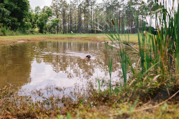 Mossy Pond Retrievers-8519