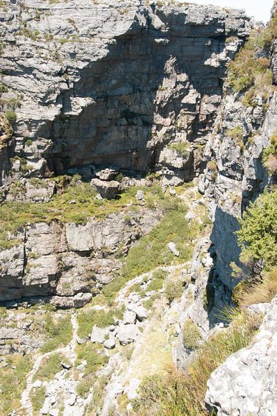 2009-November-27-Cape Town - Table Mountain-40-2