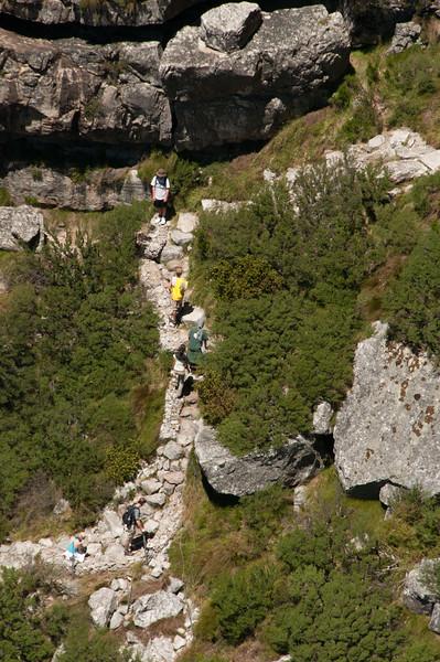 2009-November-27-Cape Town - Table Mountain-39-2