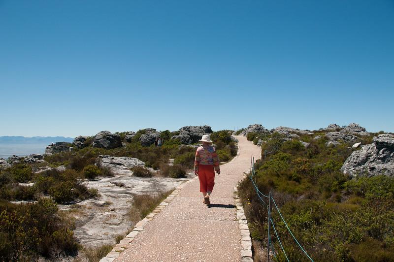 2009-November-27-Cape Town - Table Mountain-29-2