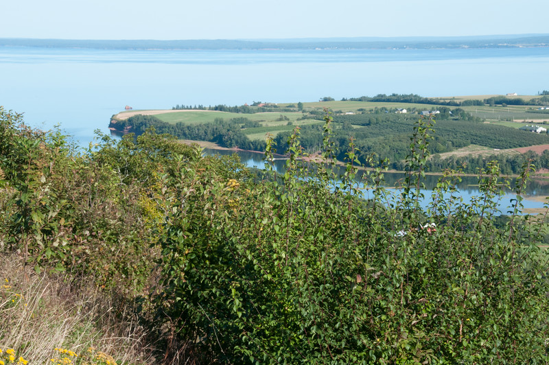 2009-September-10-The Lookoff-5