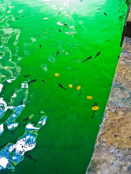 Ik Kil Cenote-25