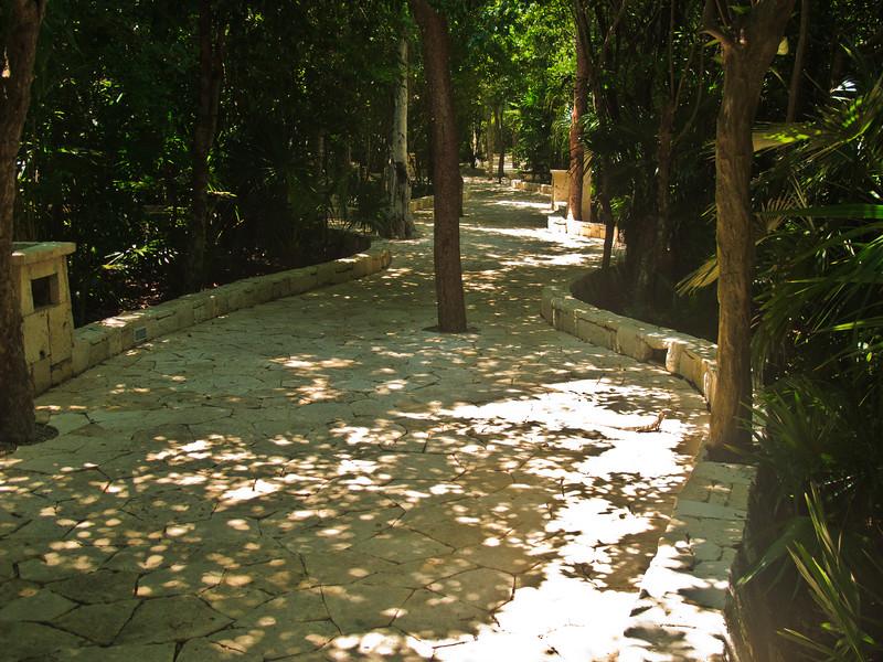 Catalonia Royal Tulum Resort-1