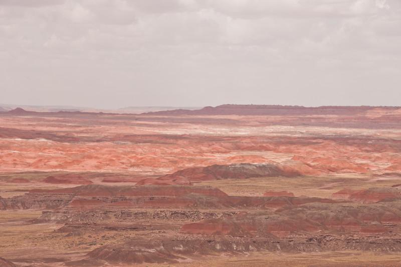 Petrifird Forest, Painted Desert (2 of 5)