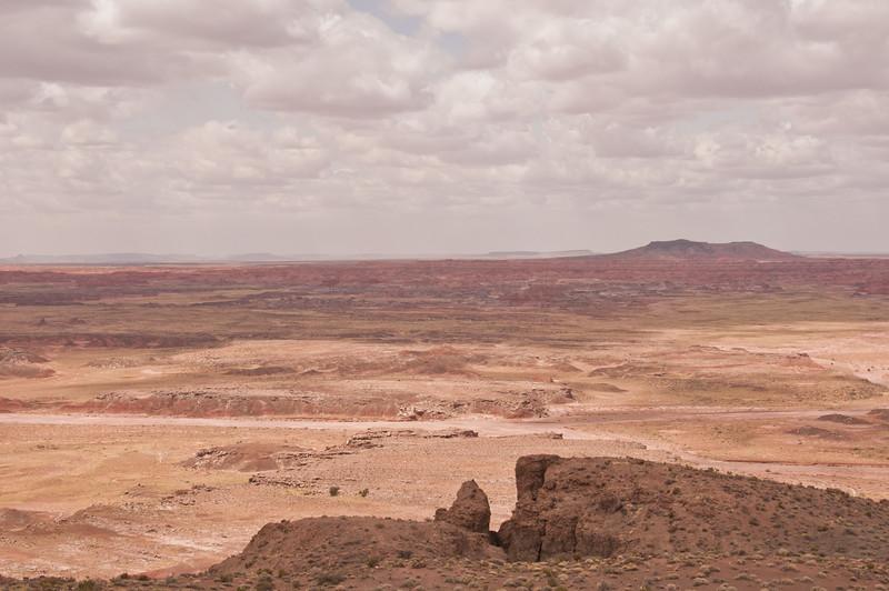 Petrifird Forest, Painted Desert (3 of 5)